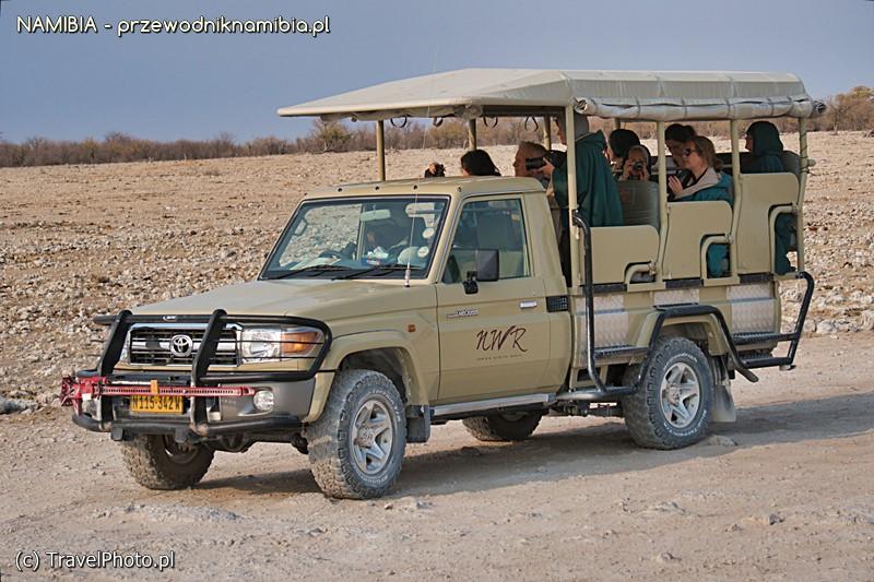 Najważniejsze na safari - zachować ciszę!