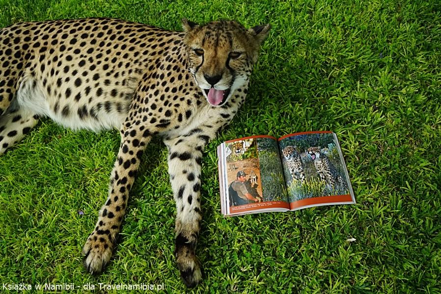 Gepard też szykuje się do czytania!