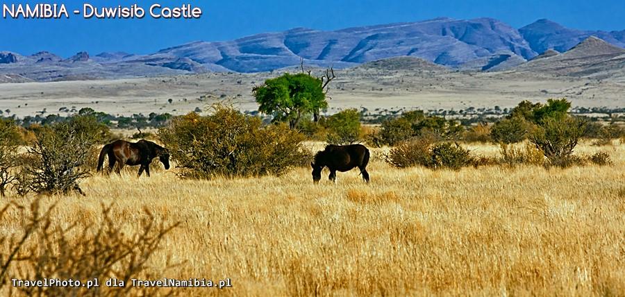 NAMIBIA - Duwisib Castle