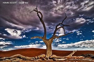 Historia jednego zdjęcia – Pustynia Namib; Dead Vlei i światło