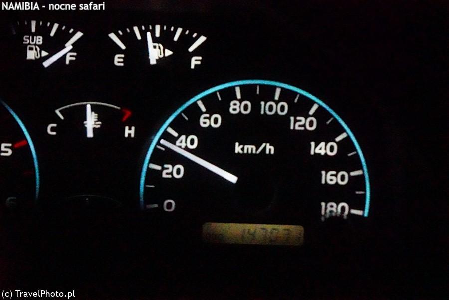 Zawrotna szybkość podczas nocnego safari.