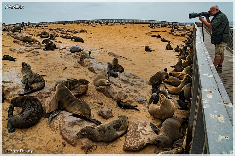 Fotografowanie na Cape Cross odbywa się z pomostu.