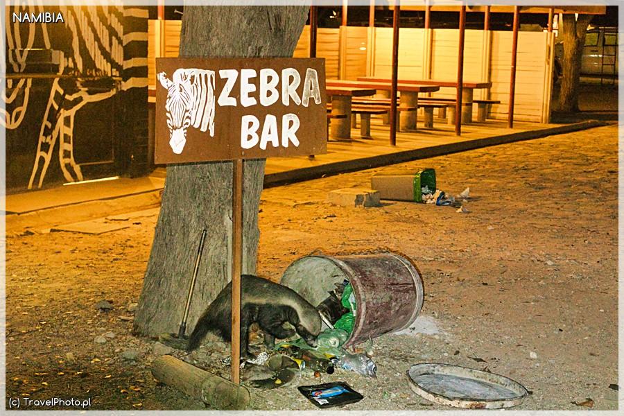 Demolka śmietników w Halali.