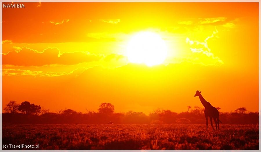 Zachód słońca w Etoszy.