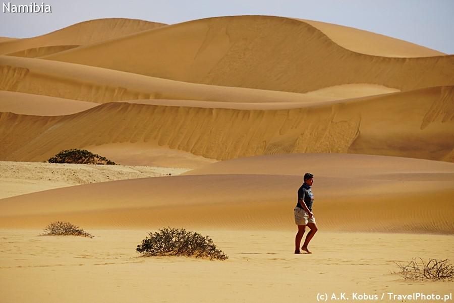 Chantelle na poszukiwaniach kameleona.