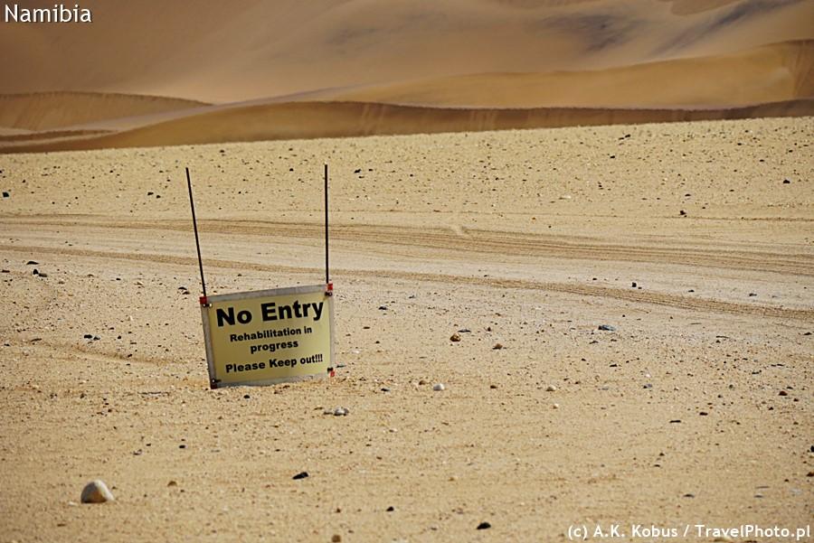 Wbrew pozorom wśród tego piasku jest masa wspaniałego życia!