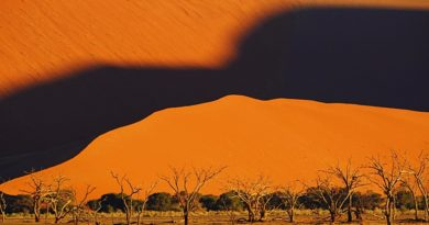 Pustynia Namib. Dolina Sossusvlei – Martwa Rzeka